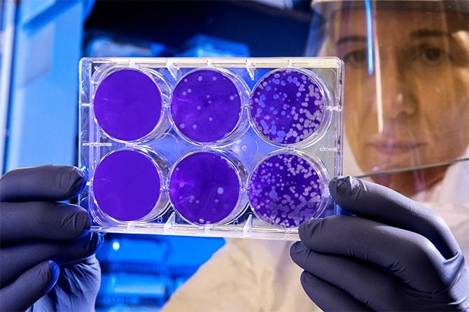 microbiologia-min